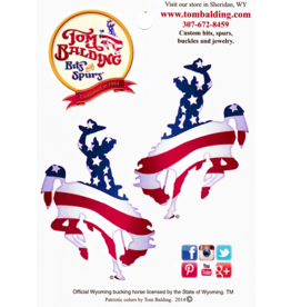Tom Balding Two Small American Flag Steamboat Decals