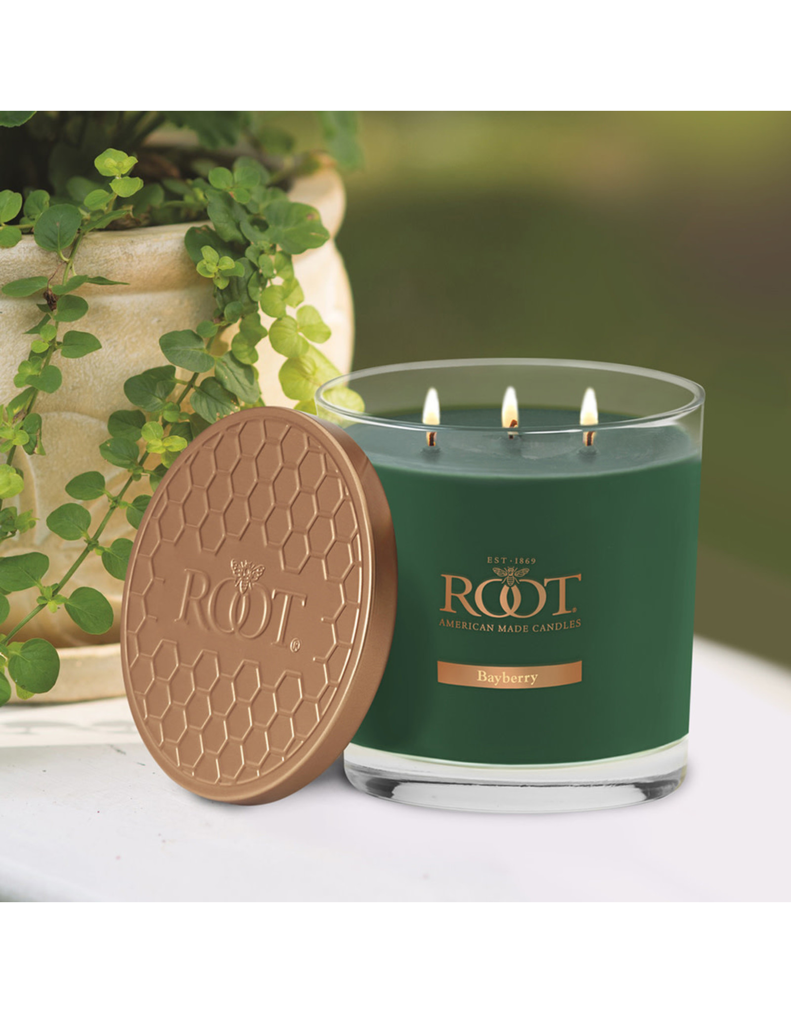 3 Wick 12oz Hive Candle - Bayberry