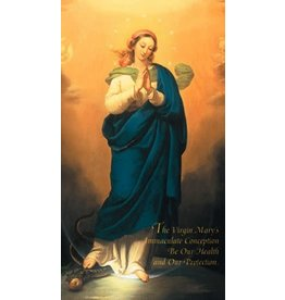 Association of Marian Helpers IMMACULATE CONCEPTION CHAPLET OF THE 10 EVANGELICAL VIRTUES OF THE BLESSED VIRGIN MARY Holy Card