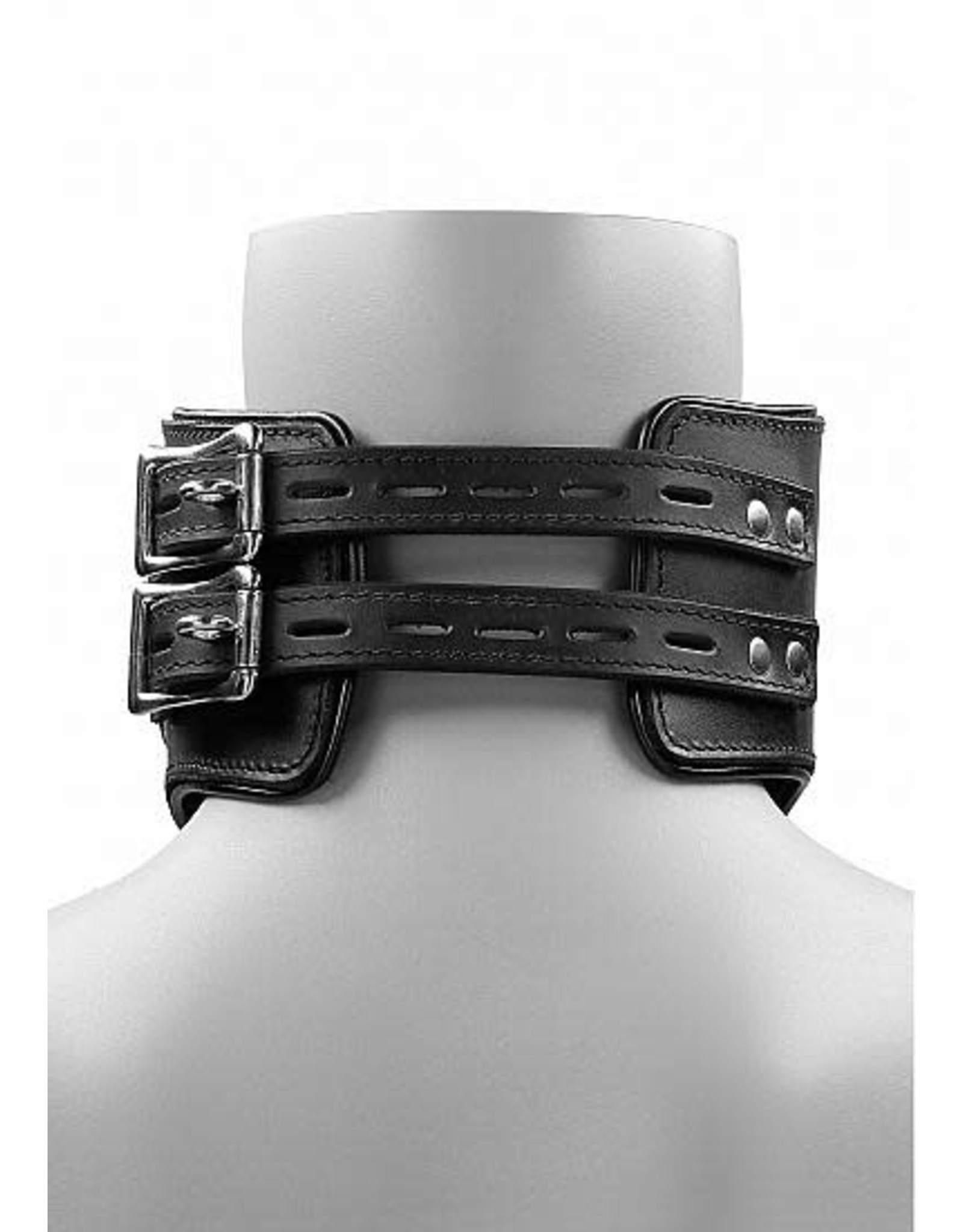 Pain - Heavy Duty Leather Padded Posture Collar