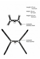 Pain- Leather Chest Harness (Male)