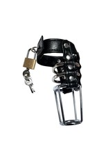 Rapture Leather & Steel Cock Cage