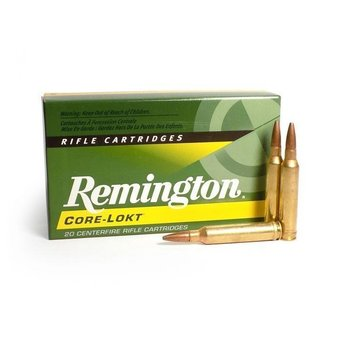 REMINGTON 338 WIN 250GR CORE-LOKT