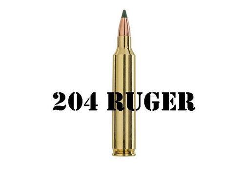 204 RUGER