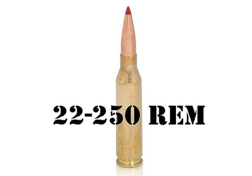 22-250 Remington
