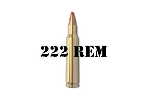 222 Remington