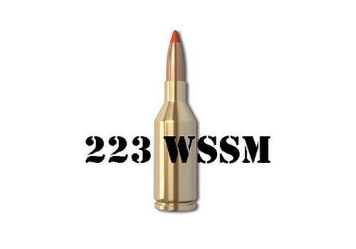 223 WSSM