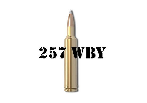 257 WEATHERBY MAG