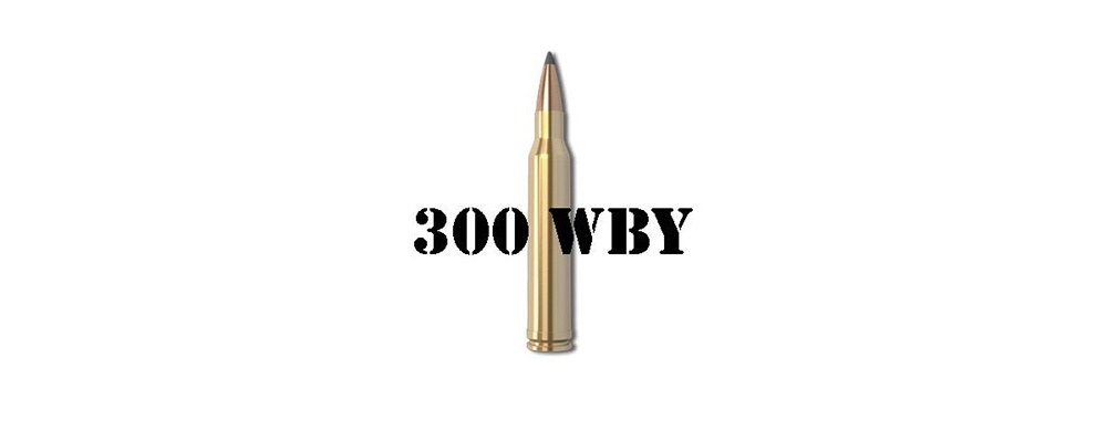 300 WEATHERBY MAG