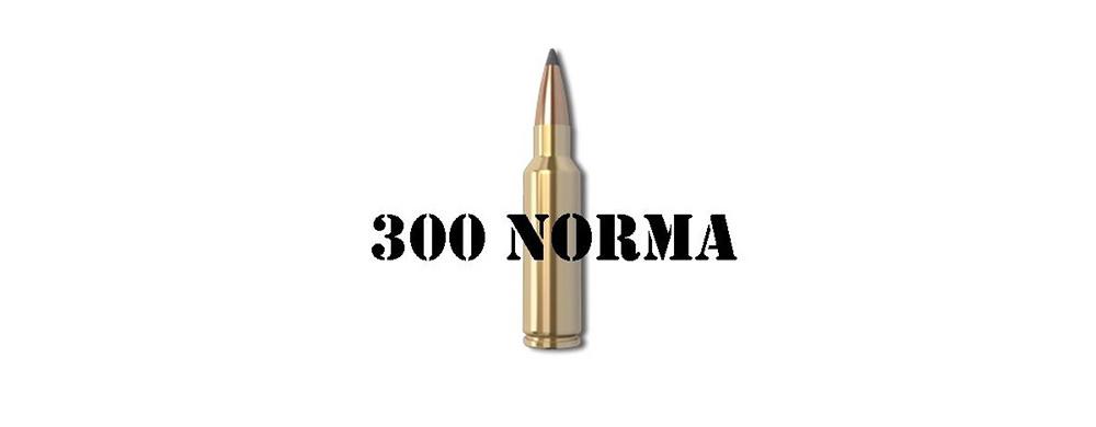 300 Norma Mag