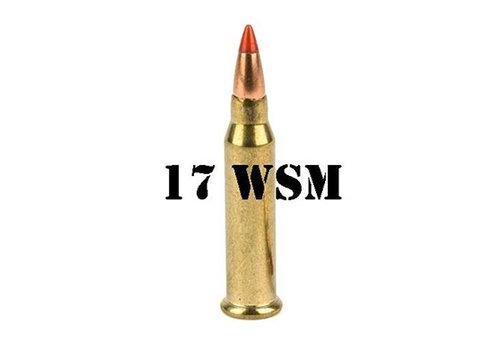 17 WSM