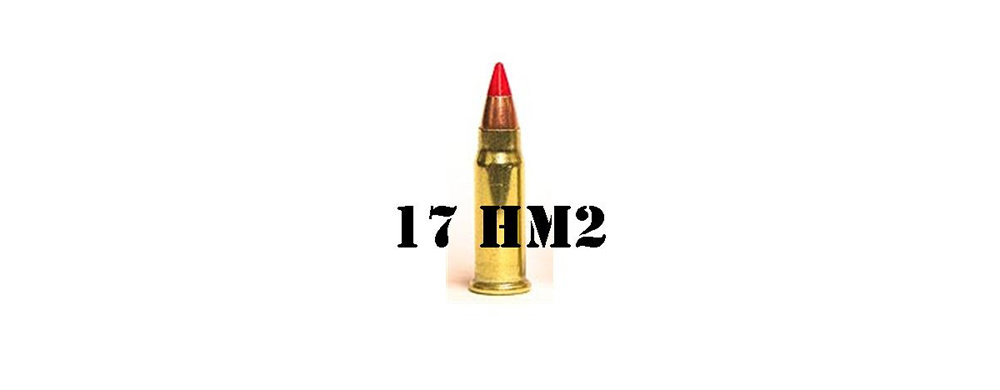 17 HORNADY MACH 2