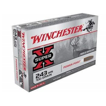 WINCHESTER 243 WIN 100 GRAIN POWER POINT