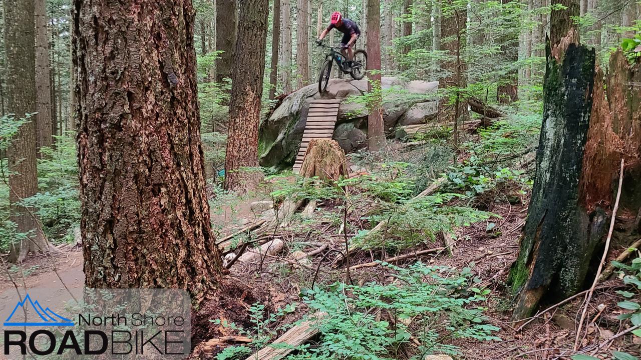 Mountain Bikes NSRB