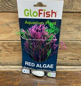 Tetra GLOFISH Red Algae
