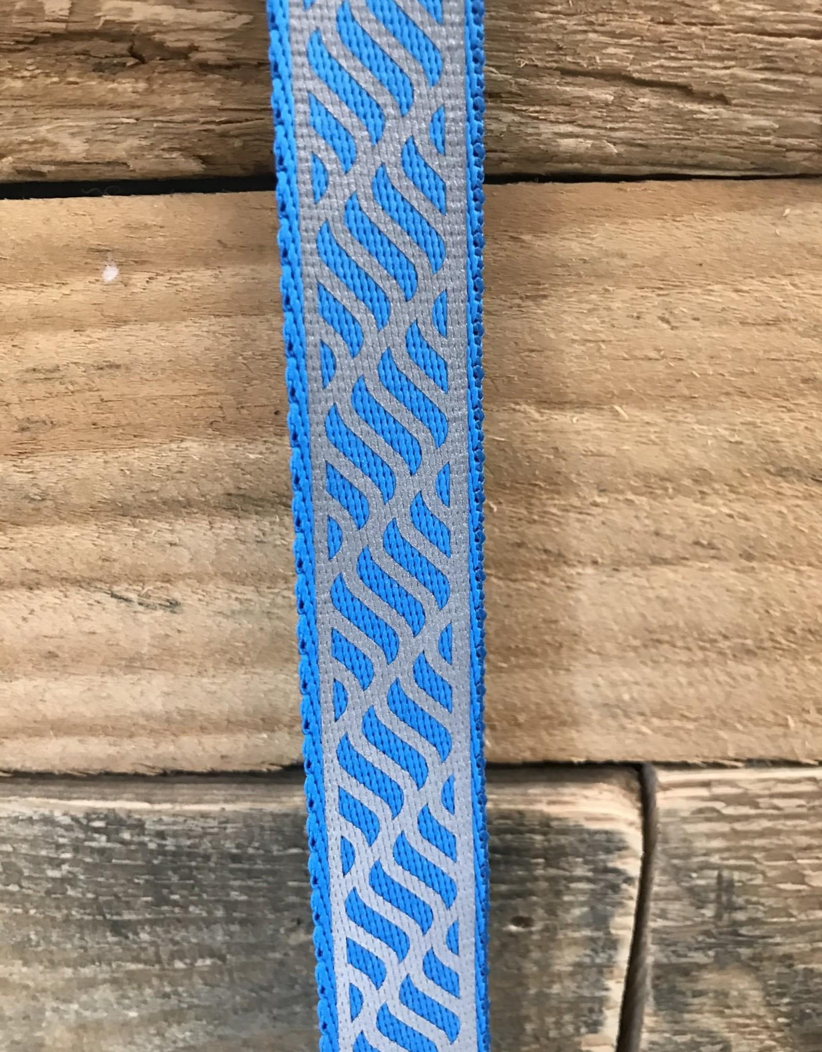 Coastal Pet Products Coastal Lazer Brite Blue Collar & Leashes