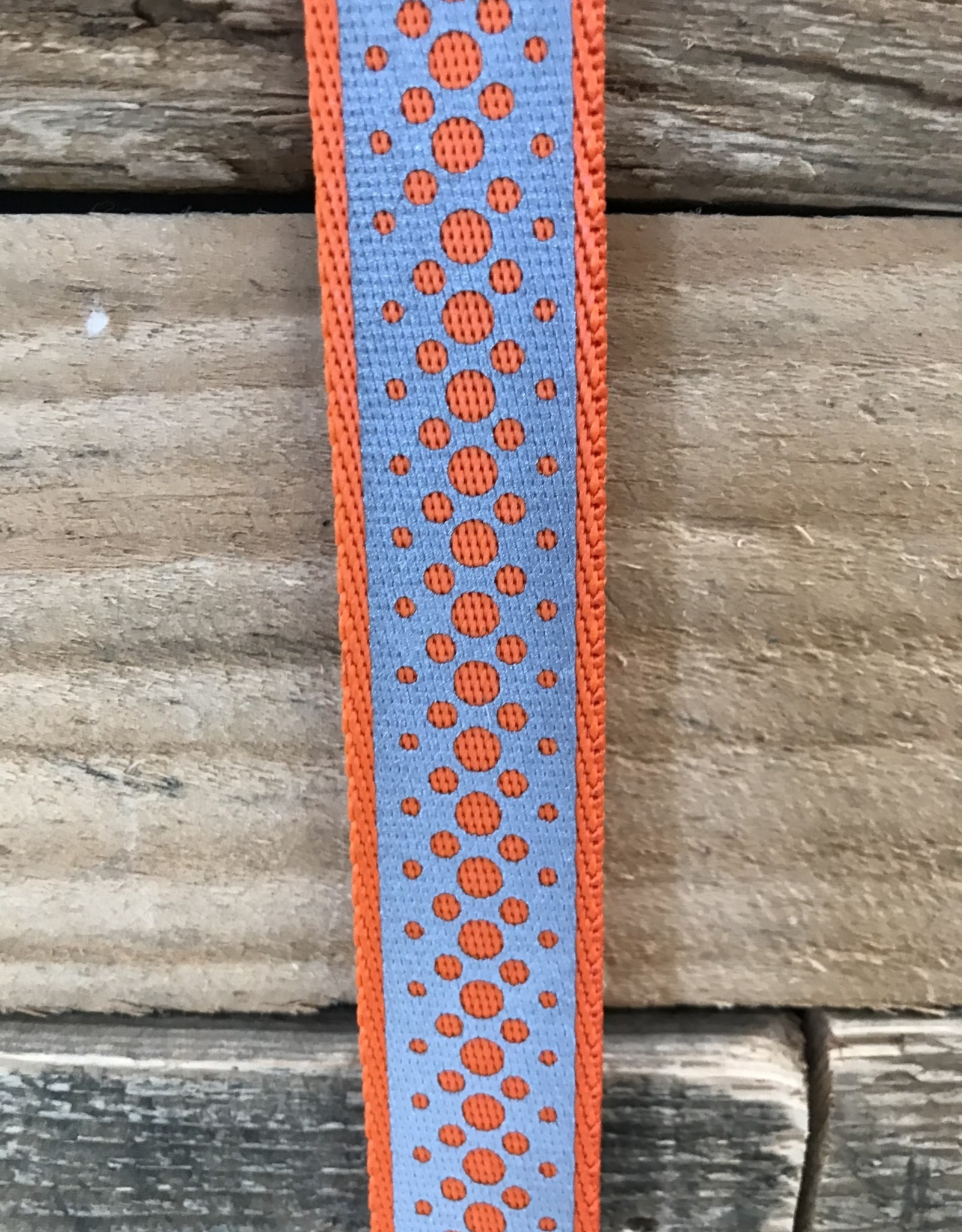 Coastal Pet Products Coastal Lazer Brite Orange  Collar & Leashes