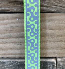 Coastal Pet Products Coastal Lazer Brite Lime Collar & Leashes