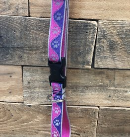 Lupine High Visibility Pink Paw Collar & Leashes dog
