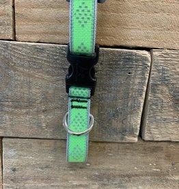 Lupine High Visibility Green diamond Collar & Leashes dog
