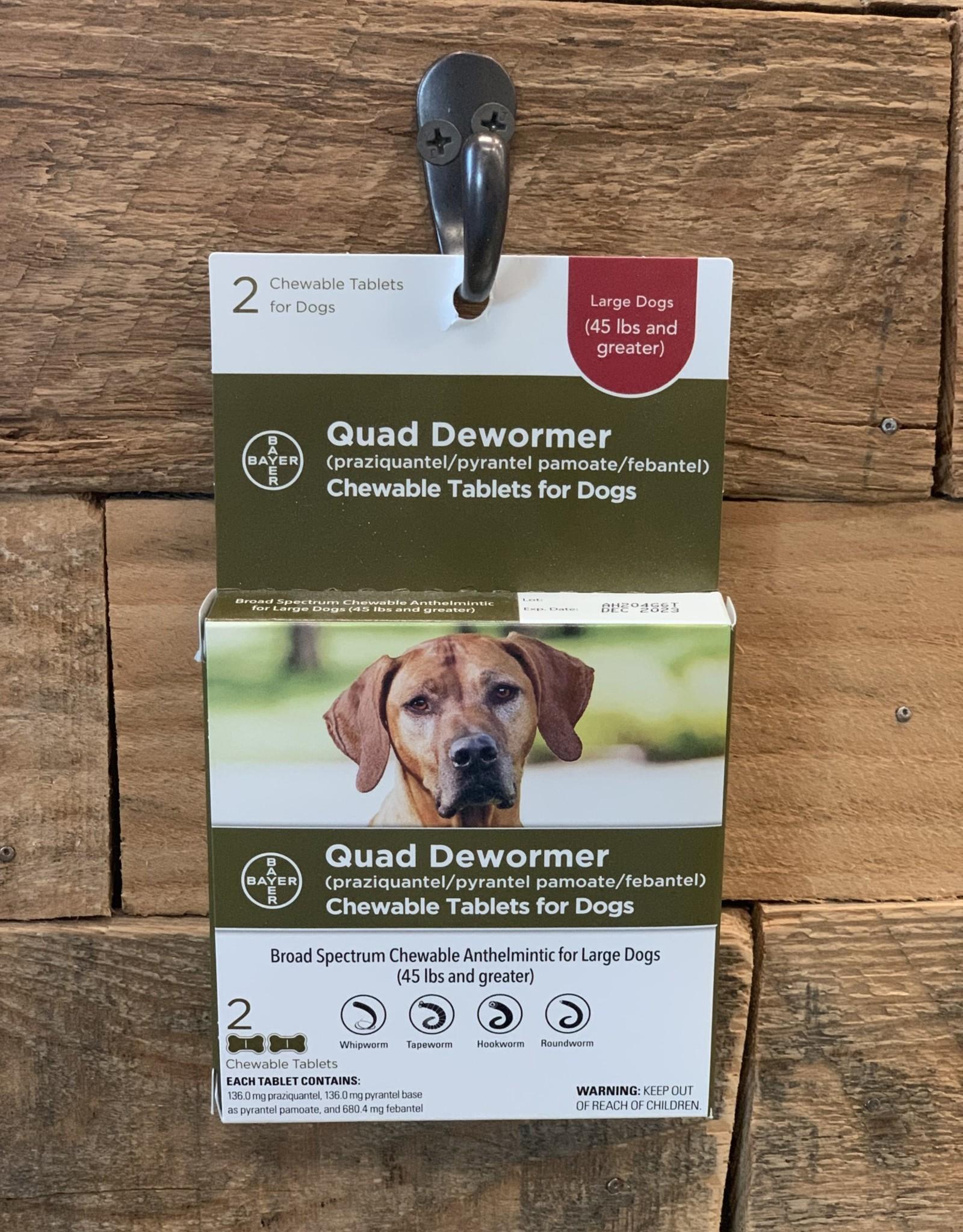 Bayer Bayer Quad Dewormer 45+ Large Dog 2ct