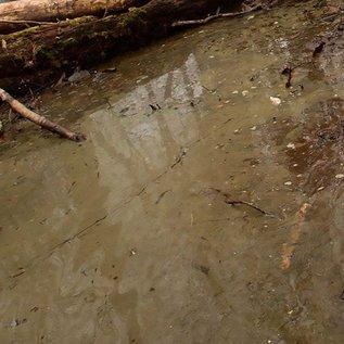 AKI 8006 WATER GEL SWAMP GREEN