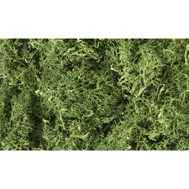 WOODLAND SCENICS WOO L163 LICHEN MEDIUM GREEN