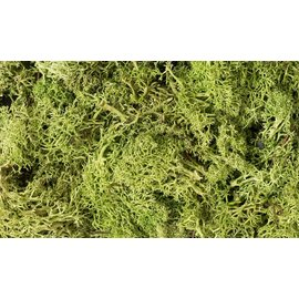 WOODLAND SCENICS WOO L162 LICHEN LIGHT GREEN