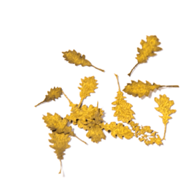 AKI 8105 OAK AUTUMN LEAVES 1/35