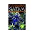 CANNABIS: SATIVA, VOLUME 1