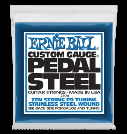 Ernie Ball Ernie Ball 2504 Pedal Steel 10-string E9 Tuning Stainless Steel Guitar Strings - .013-.038