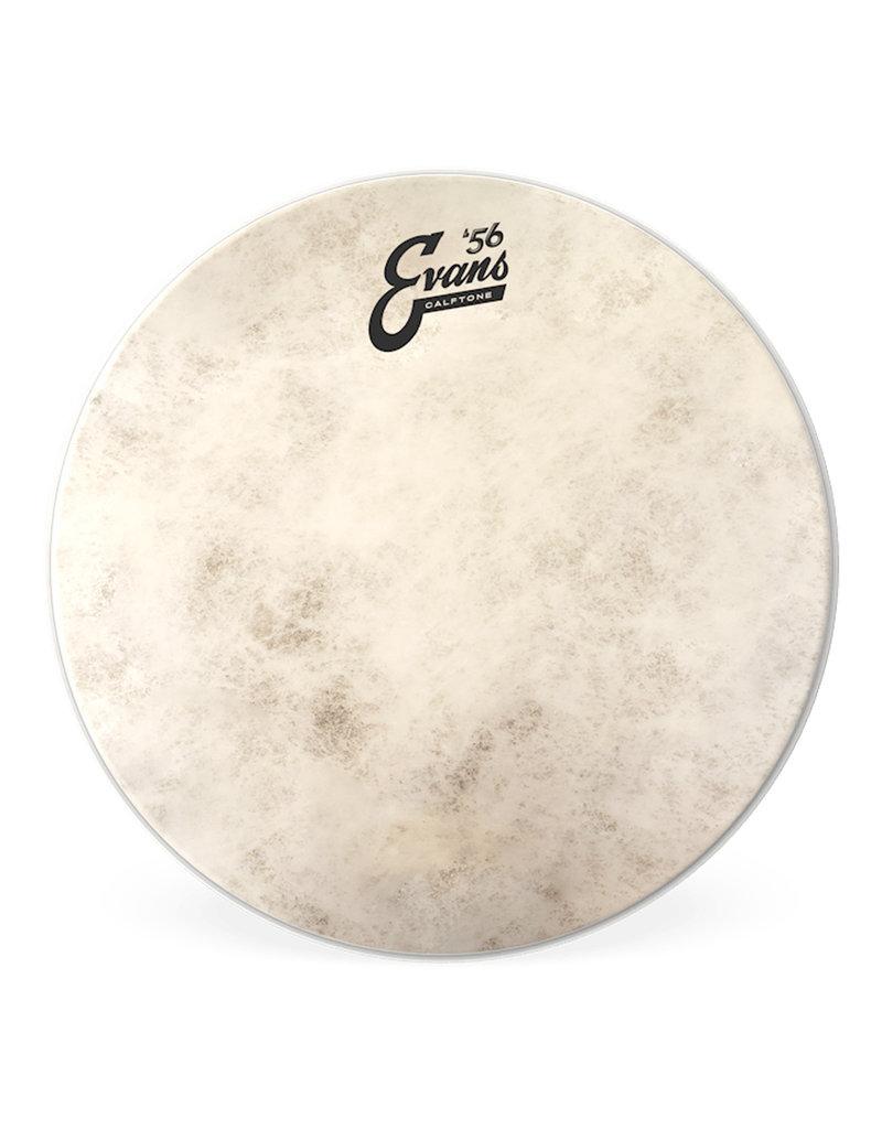 """Evans Evans CALFTONE 18"""" Drumhead"""