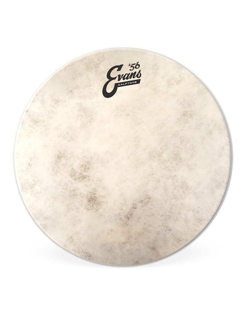 """Evans Evans Calftone 10"""" Drumhead"""