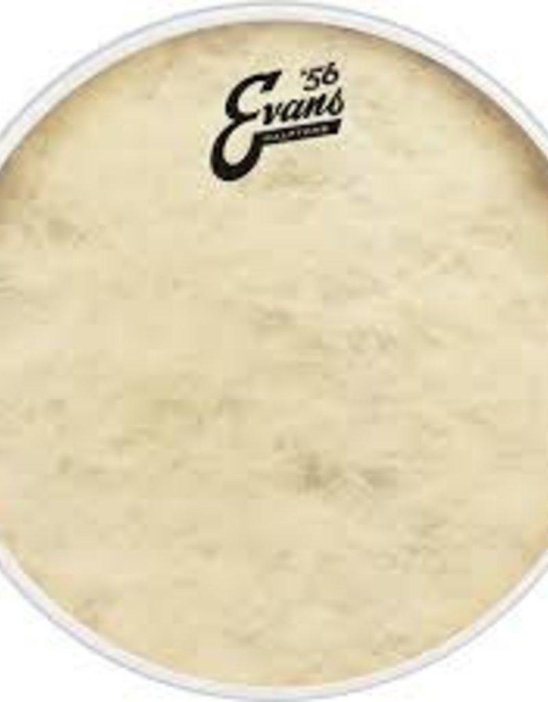 """Evans Evans Calftone 12"""" Drumhead"""
