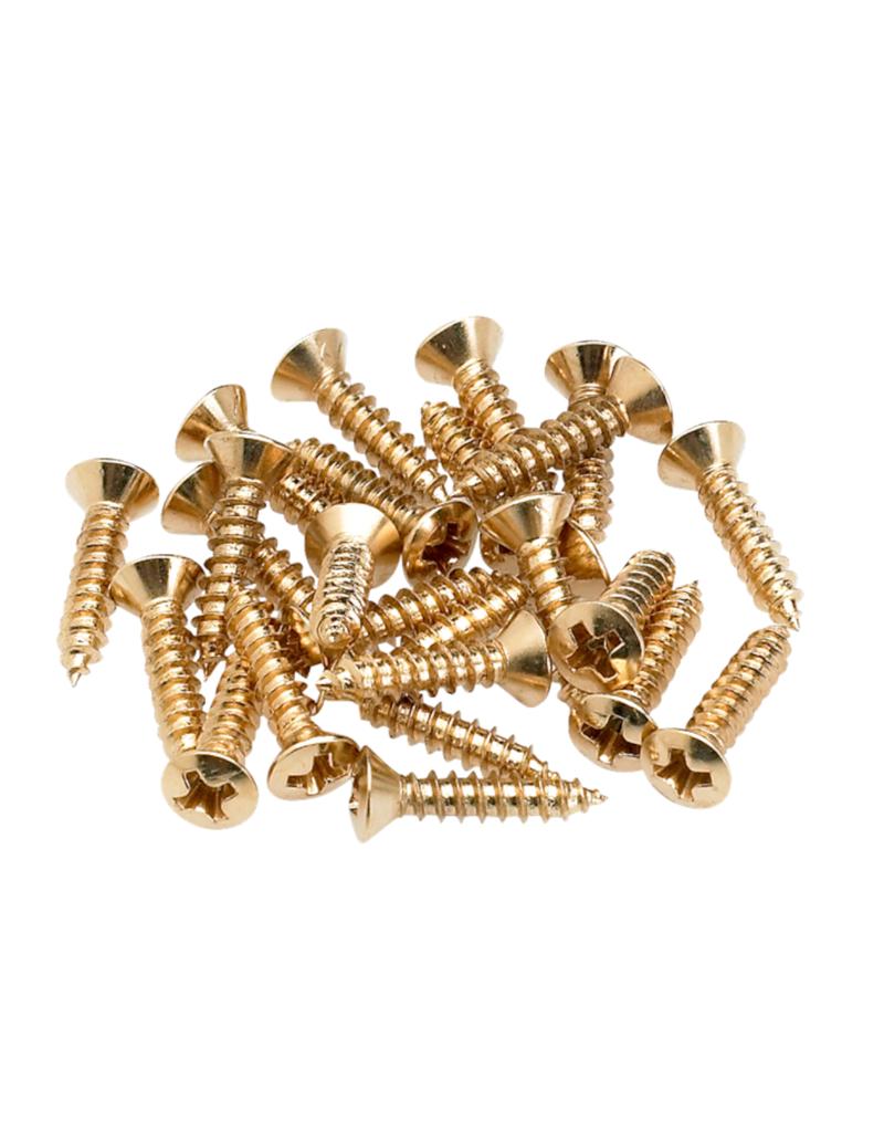 Fender Fender Pickguard/Control Plate Mounting Screws (24) (Gold)