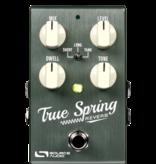 Source Audio Source Audio True Spring Reverb