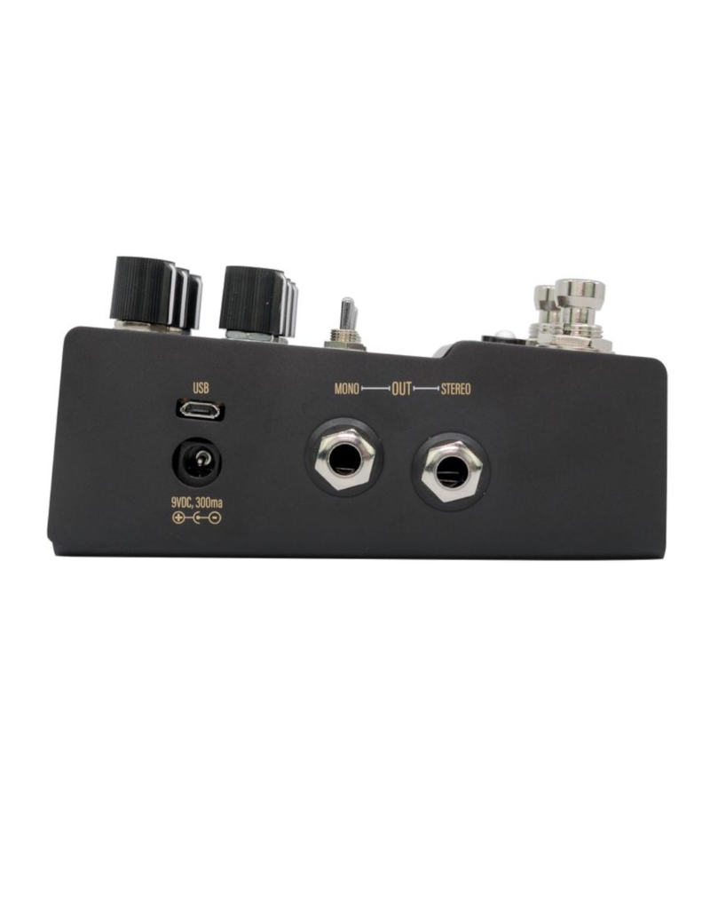 Walrus Audio Walrus Audio MAKO Series: R1 High-Fidelity Stereo Reverb