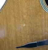 Shelley D Park Shelly D. Park Selmer Style Gypsy Jazz Guitar w/Carlton Case