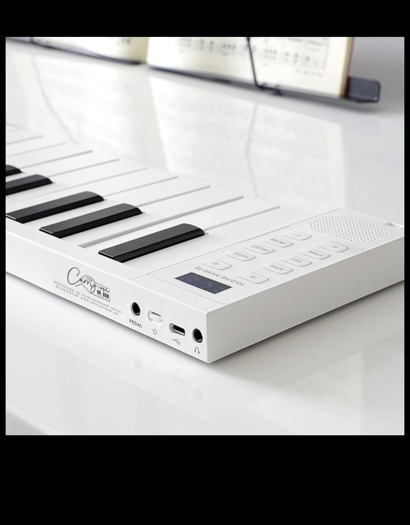 Korg Korg Carry-On Folding Piano 88