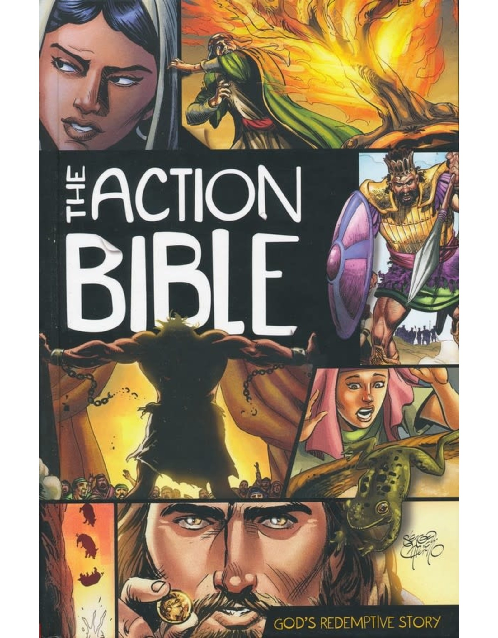 Action Bible, The: God's Redemptive Story