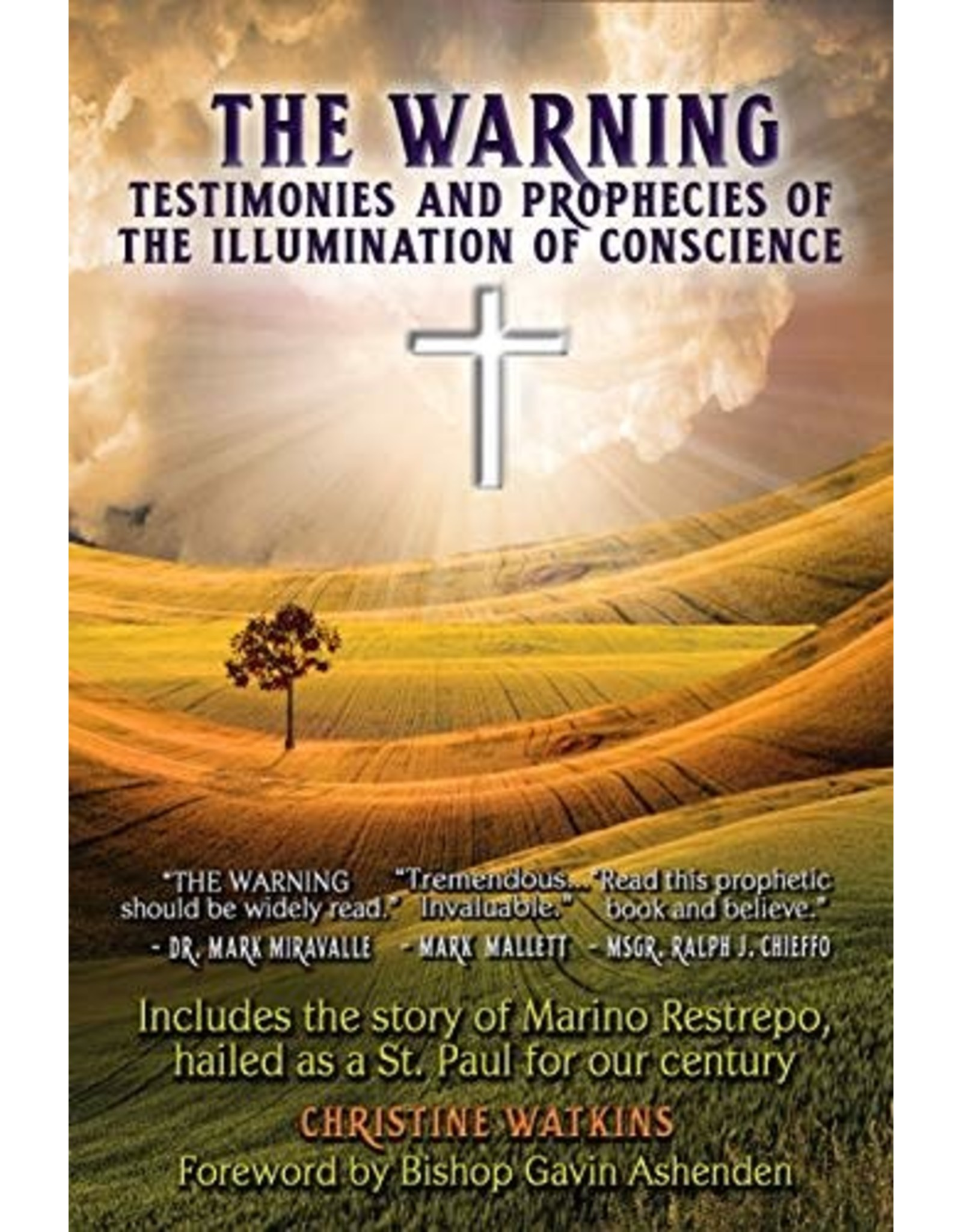The Warning: Testimonies & Prophecies of the Illumination of Conscience
