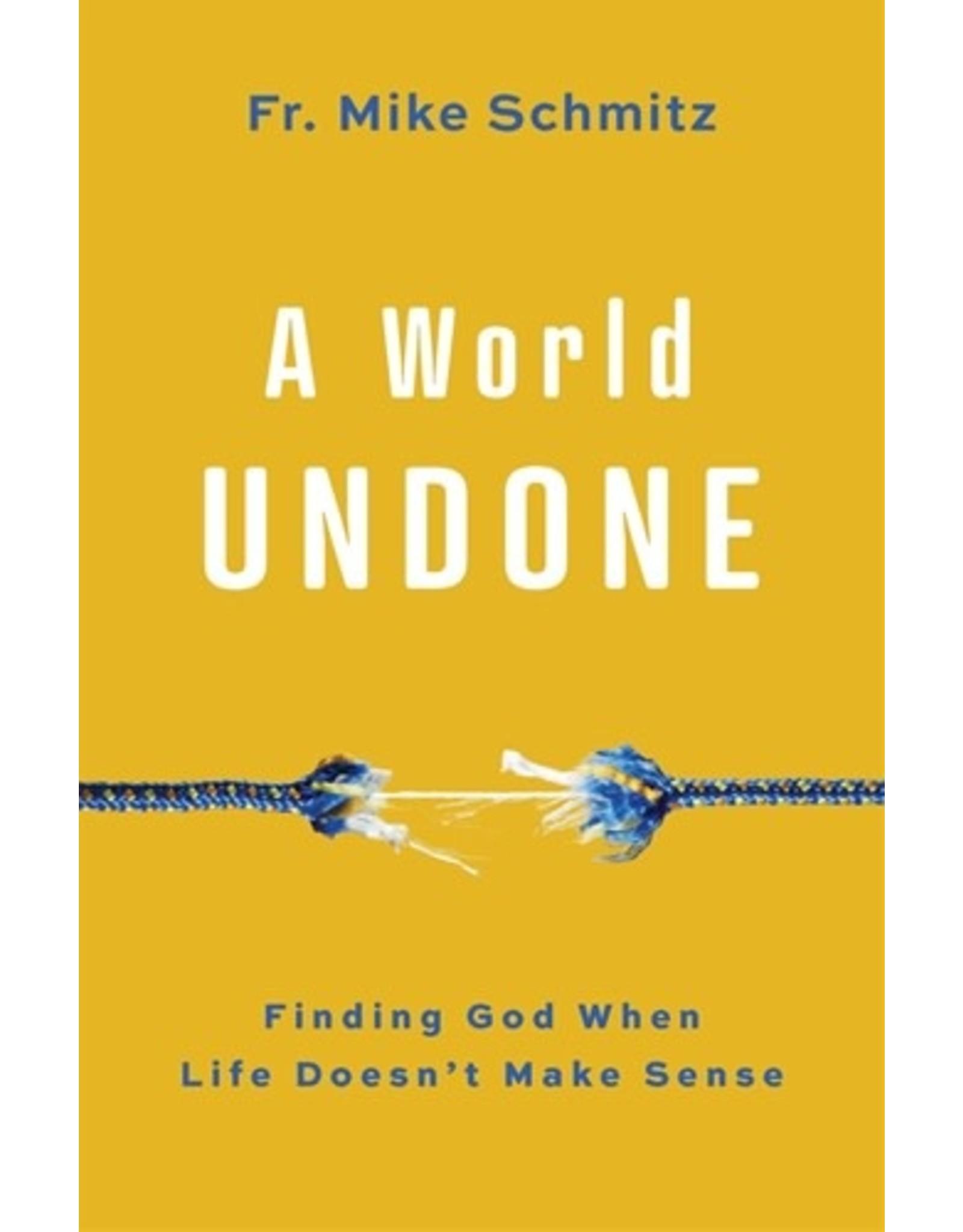A World Undone: Finding God When Life Doesn't Make Sense