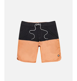 Jetty MOLLUSK BOARDSHORT
