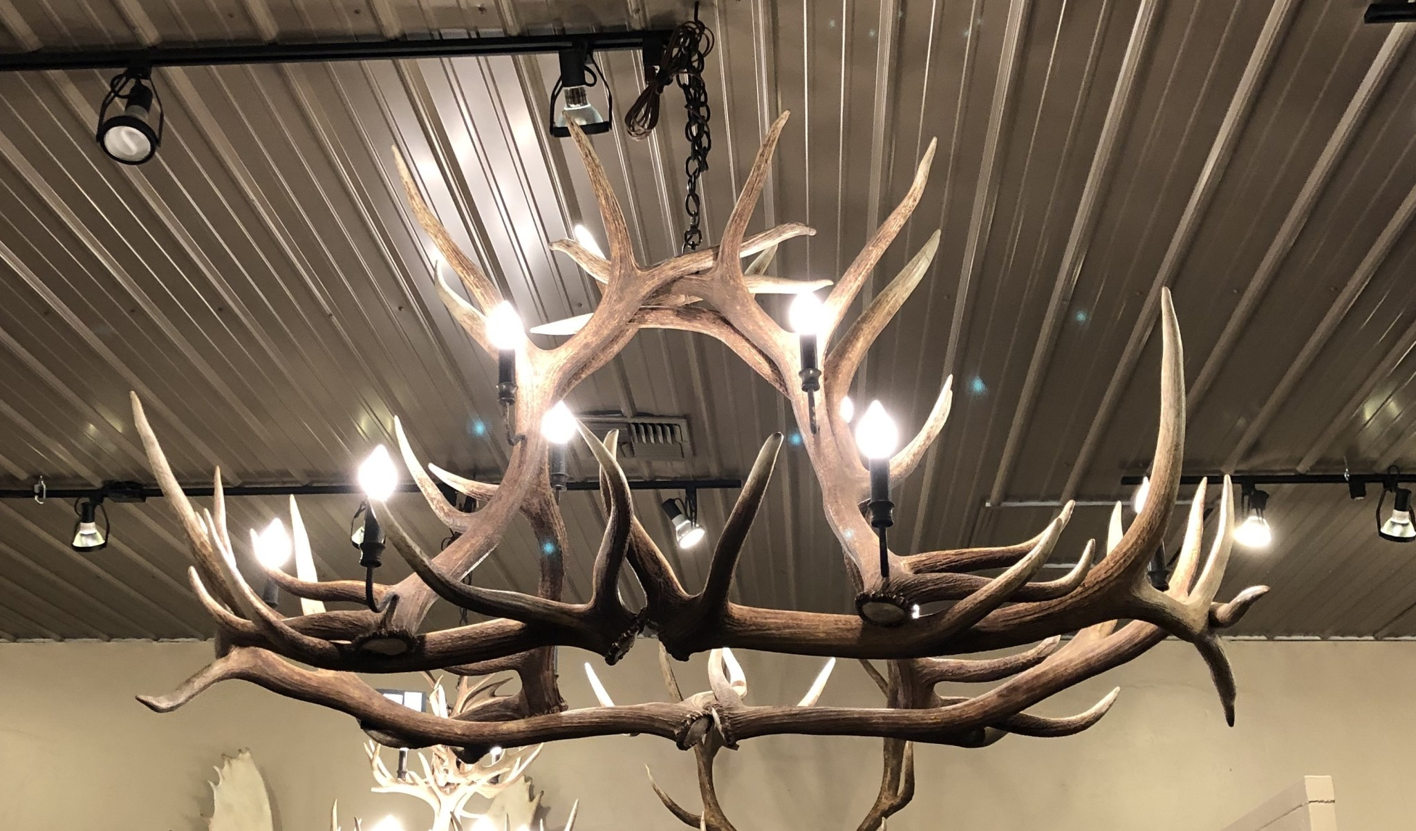 Fish 4 Sets Elk Chandelier 10 Lights