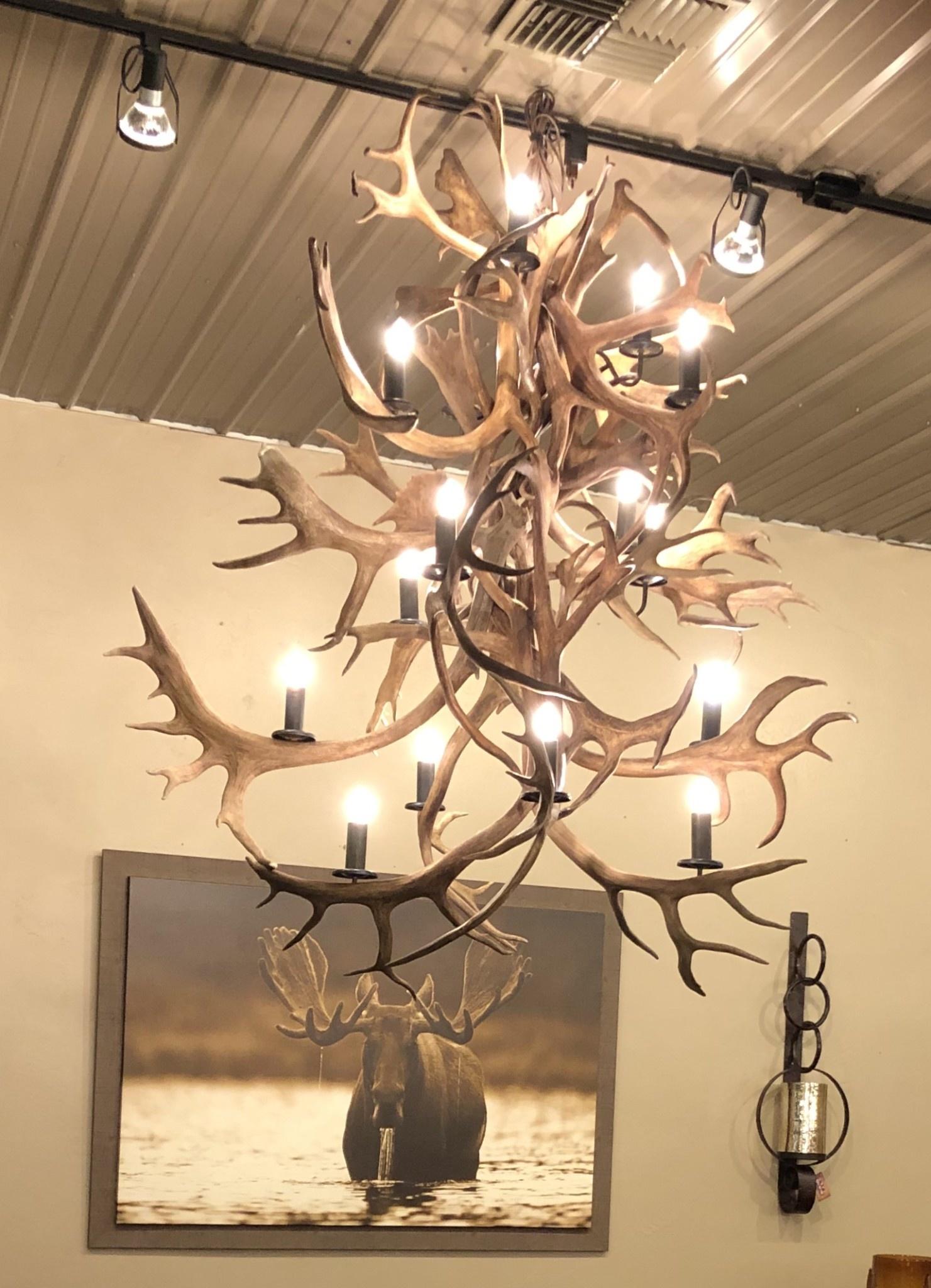 Fish Caribou Chandelier 16 Lights