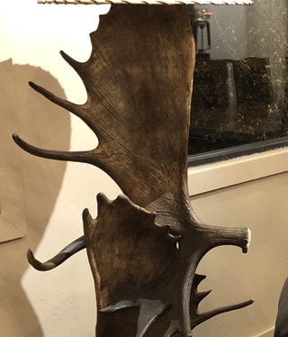 Fish Moose Antler Floor Lamp