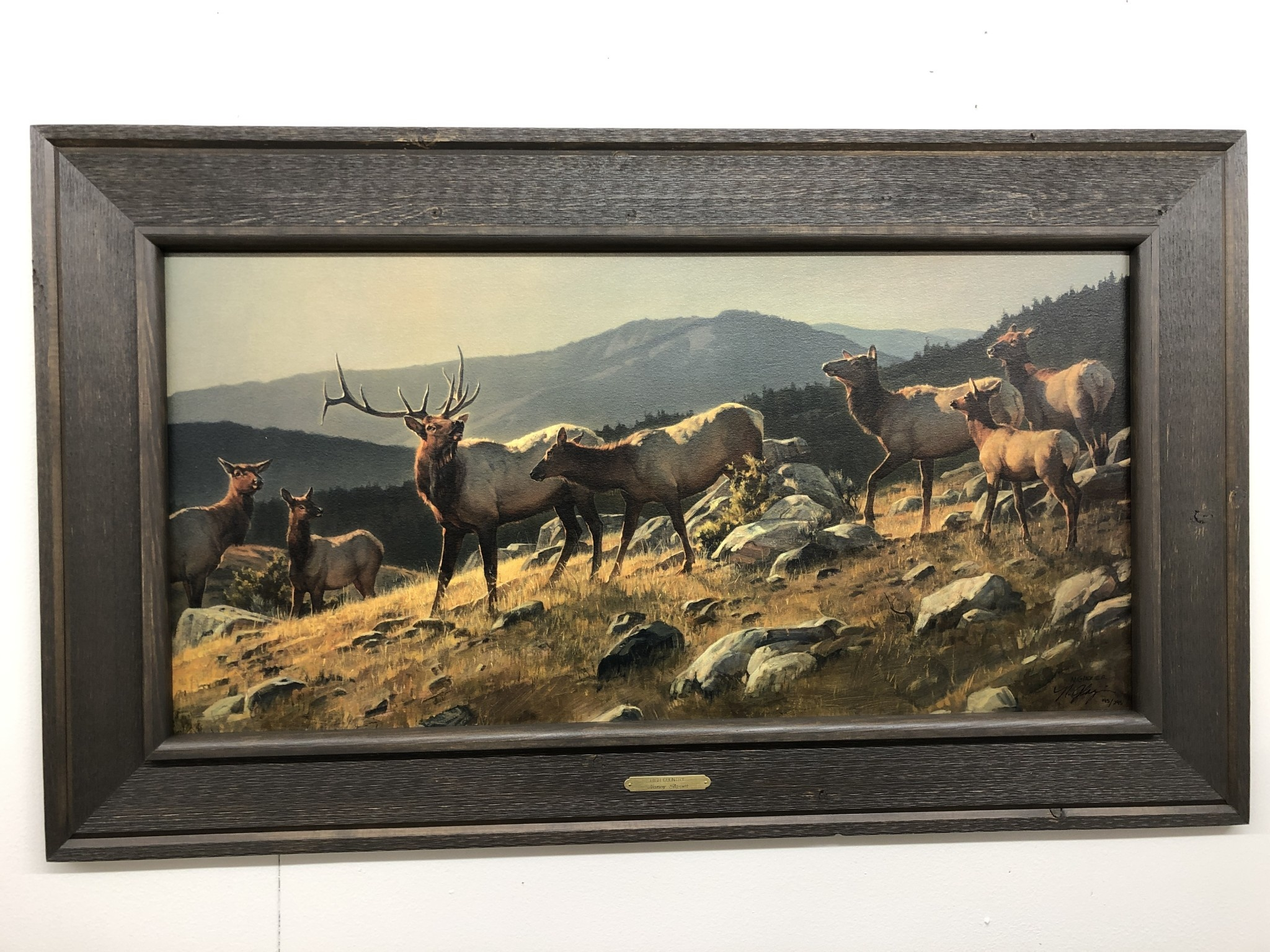 Saxton Art High Country (Elk) Limited Edition