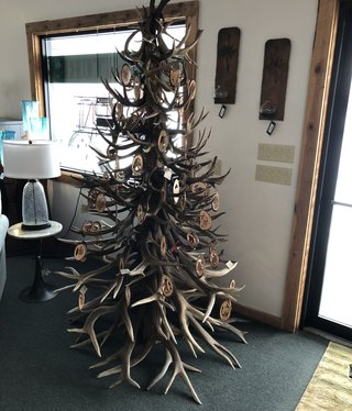 Fish Antler Tree
