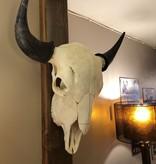Chuck Lewis Buffalo Skull