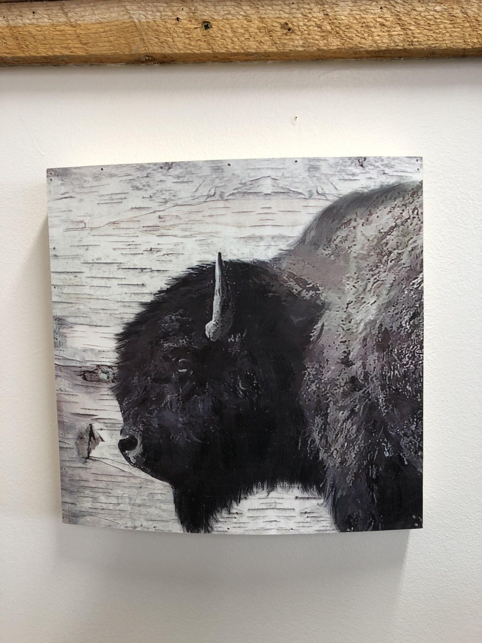 Simpkins-Canterbury Lane Buffalo Wall Art